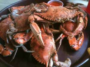 Maryland Style Blue Crabs at Crabbys