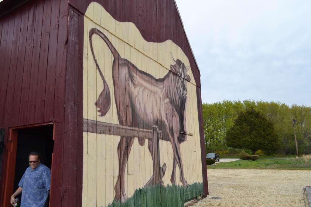 Bull on the Barn