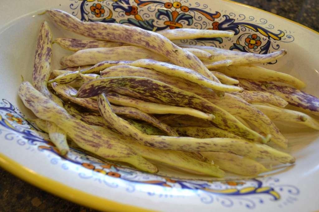 Bean Mereville di Piemonte