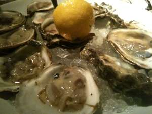 Daily oysters at Devon.