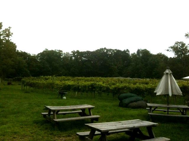 Ventimiglia Vineyard in Sussex, New Jersey.